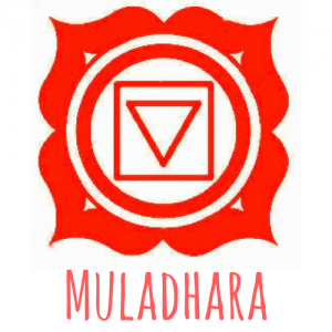 muladhara chakra, chakra racine