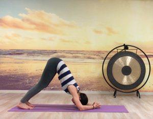 posture dauphin guide préparation posture sur la tête yoga