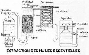 principe d'extraction de huiles essentielles