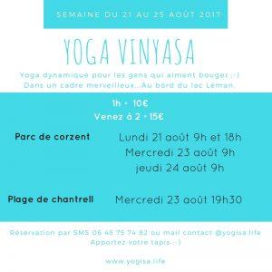 cours de yoga vinyasa en extérieur thonon les bains