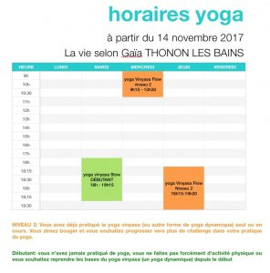 horaires yoga vinyasa thonon les bains