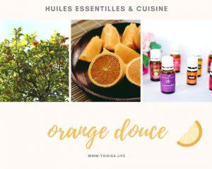 huiles essentielles et cuisine gâteau à l'orange sans gluten vegan
