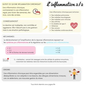 alimentation anti inflammatoire inflammation