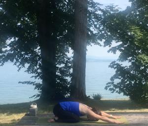 posture de repos