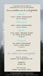 planning yoga vinyasa thonon