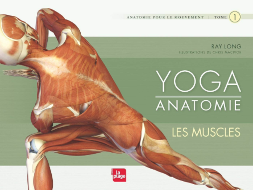 ray long yoga anatomie les muscles