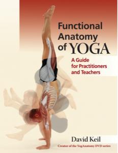 david keil yoga antomie
